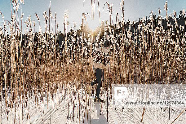 Man in wheat field in snow in Sodermanland  Sweden