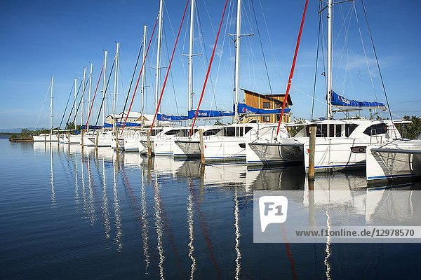 Luxury sail boats in Placencia harbour Belize.