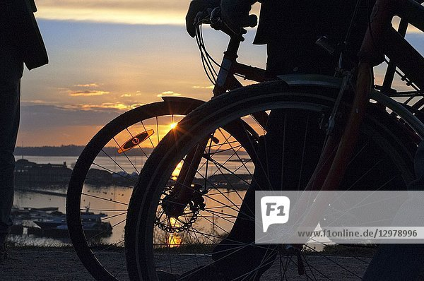Couple with a bicycle on sunset in Kaivopuisto park  Helsinki  Finland.