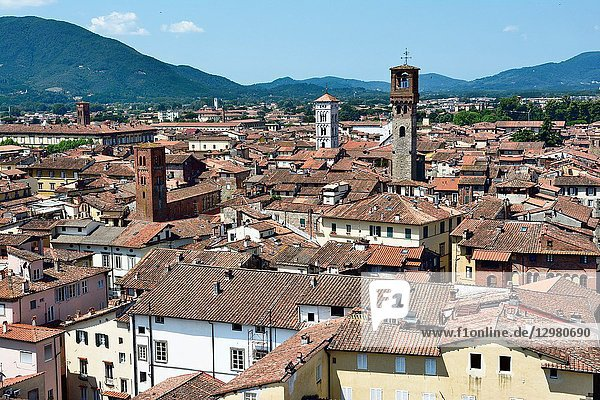 The medieval town of Lucca seen from the viewpoint on the top of Guinigi Tower. Lucca  Province of Lucca  Tuscany  Italy  Europe.