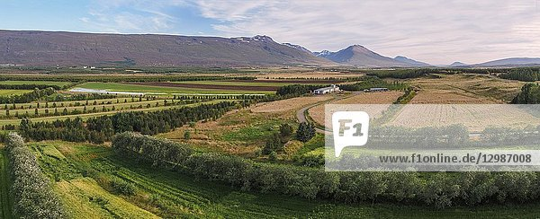 Farmland  Fljotsdalur valley  Eastern  Iceland. This image is shot using a drone.