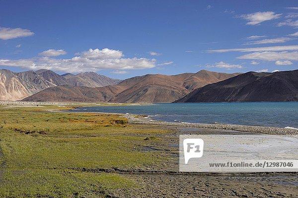 Pangong Lake  Jammu and Kashmir  India. Pangong Tso or high grassland lake extends from India to China.