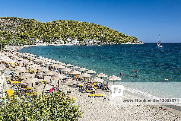 Beach on Poros Island  Saronic Island  Aegean Coast  Greek Islands  Greece