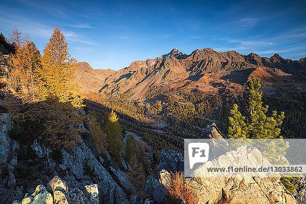 Monte Disgrazia Corni Bruciati and Valle Airale seen from Sasso Bianco in autumn  Valmalenco  Valtellina  Lombardy  Italy