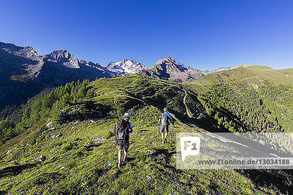 Hikers walk towards Monte Disgrazia from Scermendone Alp  Sondrio province  Valtellina  Rhaetian Alps  Lombardy  Italy