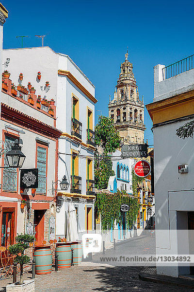 Pedestrian street in the historic centre with the Bell Tower of La Mezquita (Great Mosque) in the background  Cordoba  Andalucia  Spain