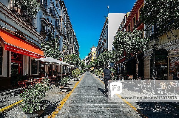 Calle Mateos Gago  a busy street with bars and restaurants in the historic centre of Seville  Andalusia  Spain
