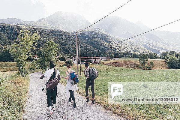Drei junge erwachsene Freunde wandern auf einem Feldweg  Rückansicht  Primaluna  Trentino-Südtirol  Italien