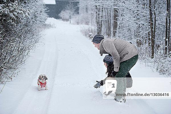 Junges Paar spielt mit Hund im verschneiten Wald  Ontario  Kanada