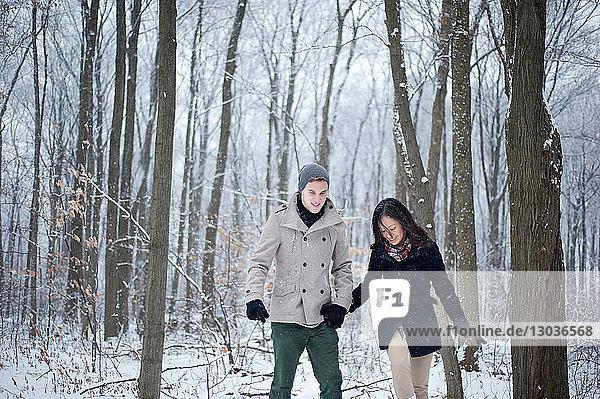 Junges Paar geht Hand in Hand im verschneiten Wald  Ontario  Kanada