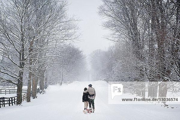Romantisches junges Paar beim Hundespaziergang im verschneiten Wald  Rückansicht  Ontario  Kanada