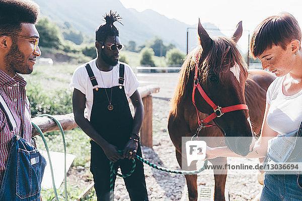 Junge Frauen und Männer  die sich auf dem ländlichen Reitplatz mit dem Pferd verbinden