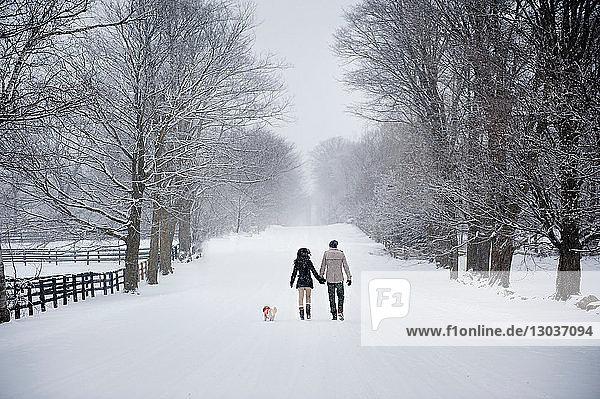 Junges Paar beim Hundespaziergang im verschneiten Wald  Rückansicht  Ontario  Kanada