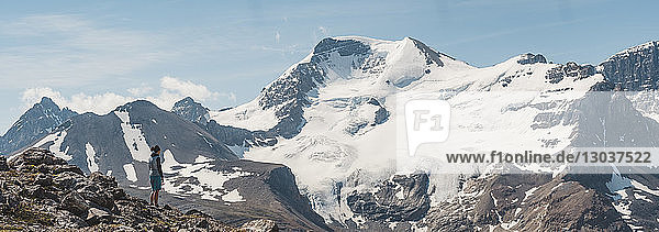 Female hiker admiring scenic view of Athabasca peak and glacier†from Wilcox Pass  Alberta  Canada