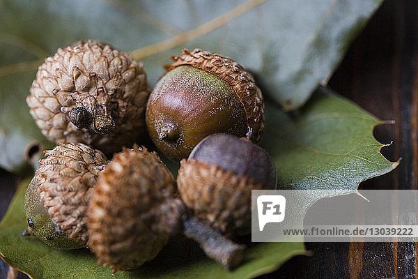 Nahaufnahme von Eicheln auf Blättern am Holztisch