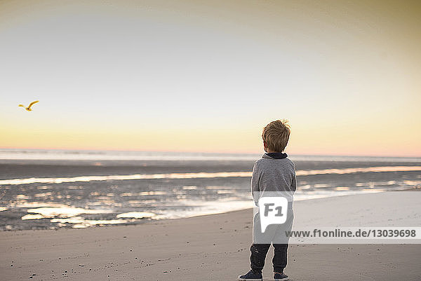 Rückansicht eines Jungen  der bei Sonnenuntergang am Strand gegen den Himmel steht