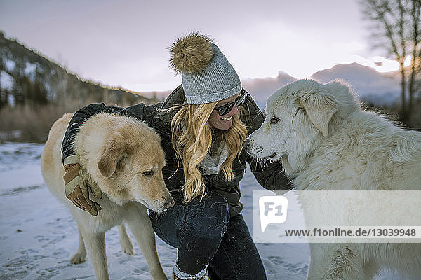 Happy woman stroking dogs while crouching on snowy field against sky during sunset
