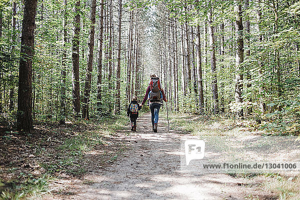 Rear view of mother and children with backpack hiking in forest