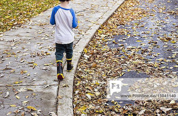 Rückansicht eines Jungen  der im Herbst auf einem Fußweg geht