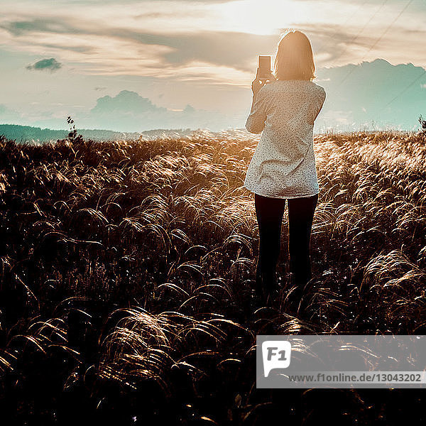 Rückansicht einer Frau  die mit einem Smartphone fotografiert  während sie bei Sonnenuntergang auf dem Feld steht