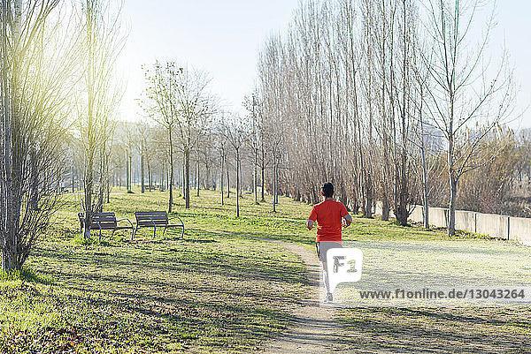 Rückansicht eines Mannes beim Laufen während einer Übung gegen kahle Bäume im Park