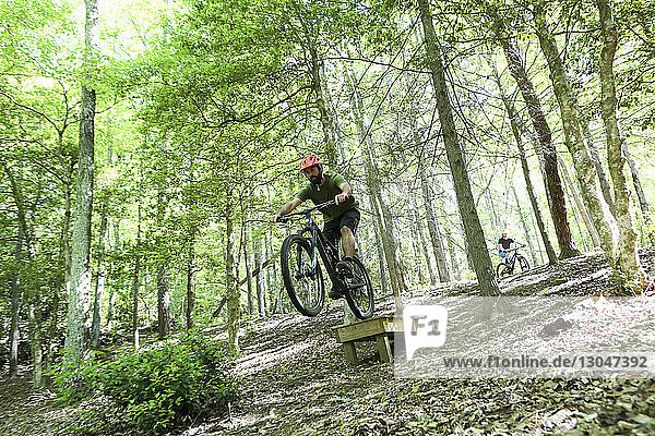 Hikers mountain biking amidst trees at forest