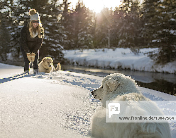 Happy woman with dogs in forest during winter
