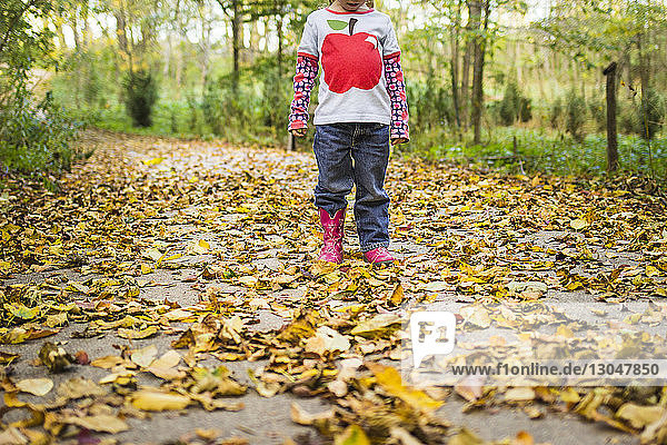 Low section of girl standing on field covered with fallen autumn leaves