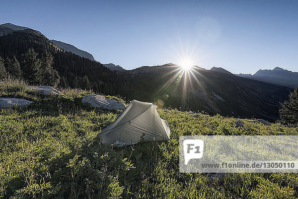 Scenic view of tent on field against clear sky on sunny day