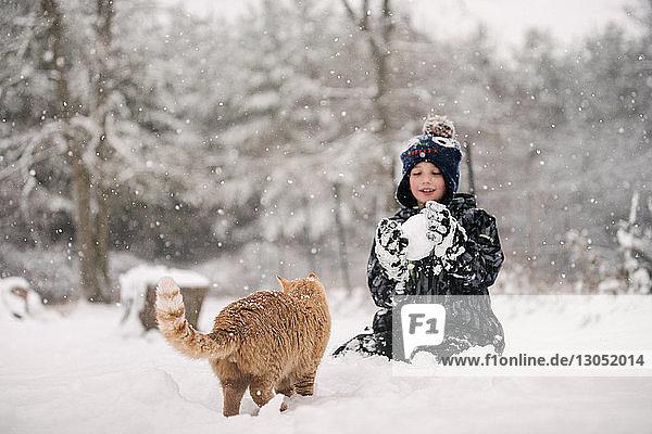 Junge versucht  Schneeball auf Katze zu werfen