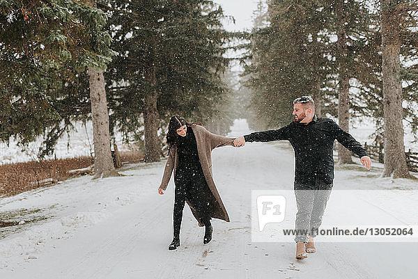 Wandern zu zweit in verschneiter Landschaft  Georgetown  Kanada