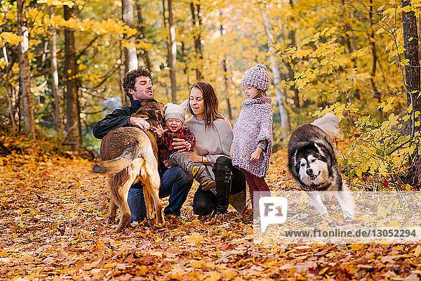 Vierköpfige Familie und Hunde im Wald