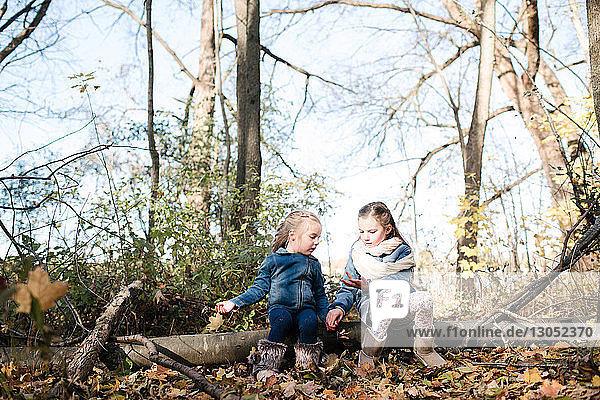 Schwestern erforschen die Natur im Wald