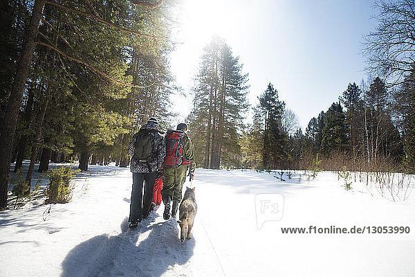 Rückansicht von Freunden und Hund beim Spaziergang auf einem schneebedeckten Feld an einem sonnigen Tag