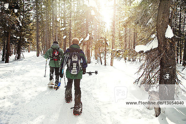 Skiers walking in forest during winter
