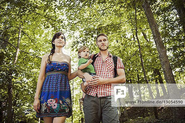 Niedrigwinkelansicht einer Familie  die beim Waldspaziergang wegschaut