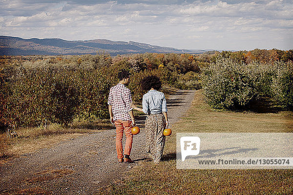 Rückansicht eines Paares mit Kürbissen in der Hand  das auf einem Feld läuft
