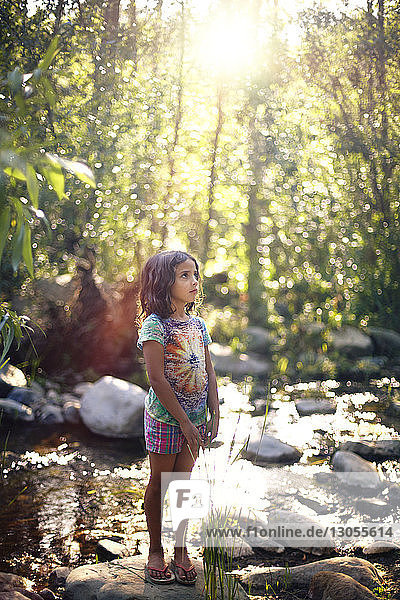 Girl looking up while standing by river at forest