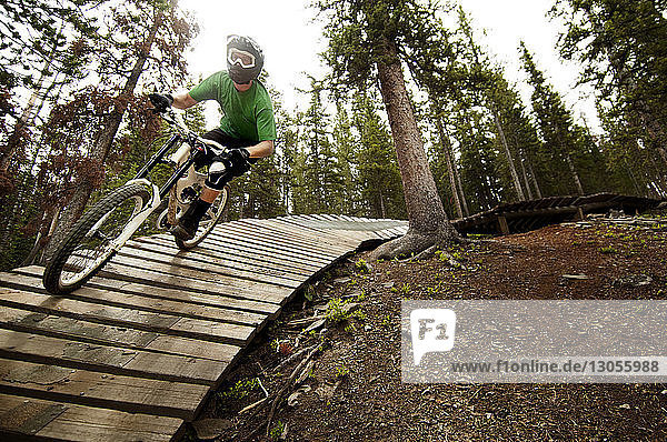 Mountain biker cycling on sports ramp in forest
