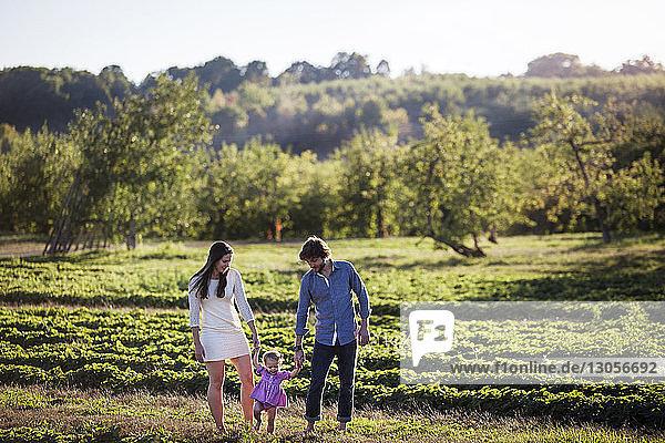 Family walking on grassy field