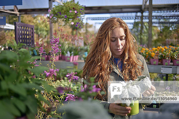 Woman looking at potted plant while standing in plant nursery