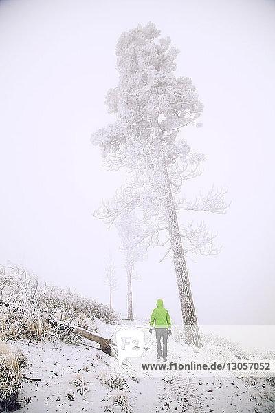 Wanderer wandert bei Nebel auf schneebedecktem Feld