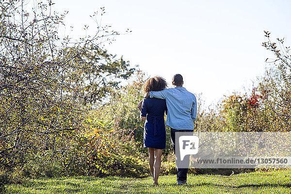 Rückansicht eines Paares  das auf einem Grasfeld gegen den Himmel steht
