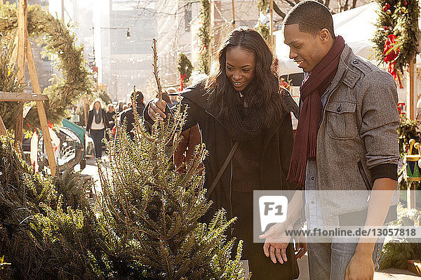 Young couple checking plants at market stall