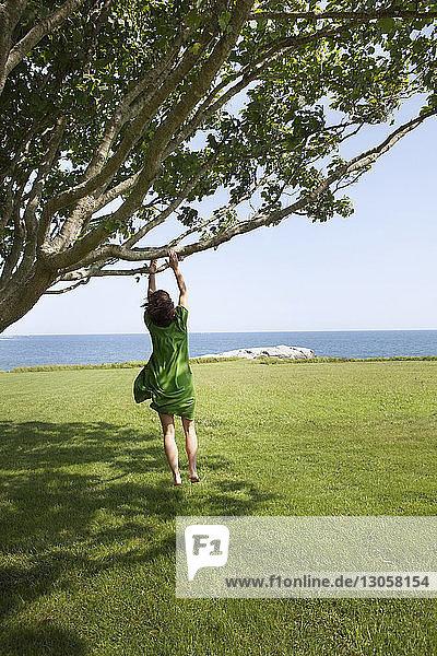 Rückansicht einer Frau  die springt  während sie einen Ast über ein Grasfeld erreicht
