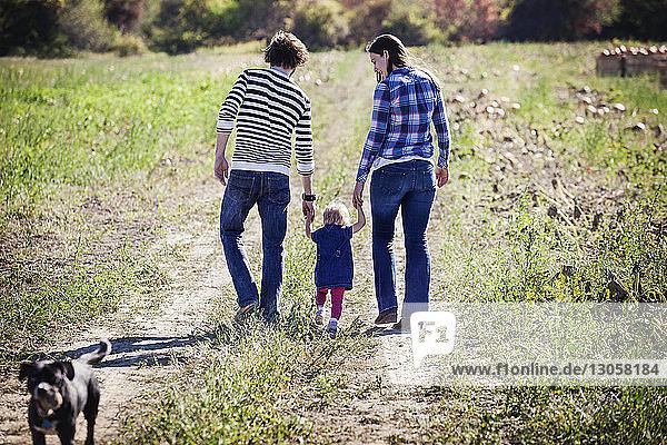 Rückansicht einer Familie  die auf einem Grasfeld geht