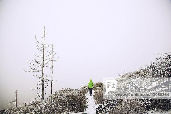 Wanderer  der auf einem schneebedeckten Pfad durch kahle Bäume geht
