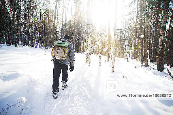 Rückansicht eines männlichen Wanderers mit Rucksack  der an einem sonnigen Tag im schneebedeckten Wald wandert