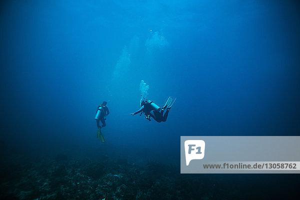 Gerätetaucher im Meer