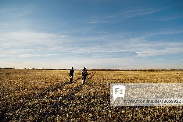 Rückansicht von Freunden  die auf einem Grasfeld gegen den Himmel laufen